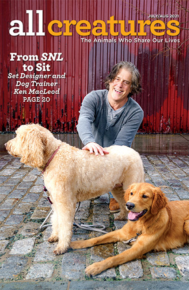 In a story featured on the cover of the July-August 2021 issue of All Creatures, Ken Macleod reveals how he balances being an SNL set builder and a dog trainer.