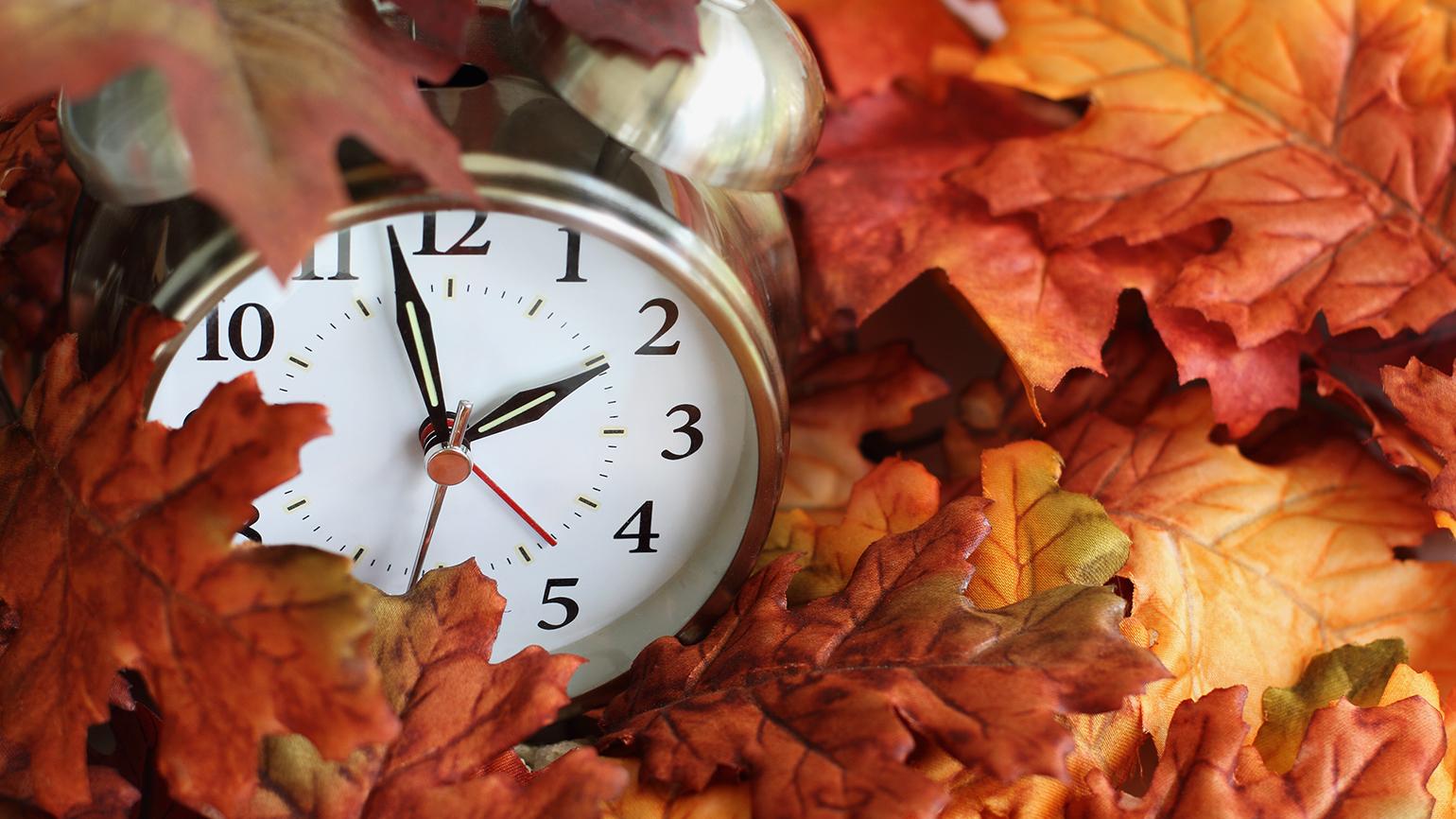 A clock showing one minute till 2 rests in a pile of leaves