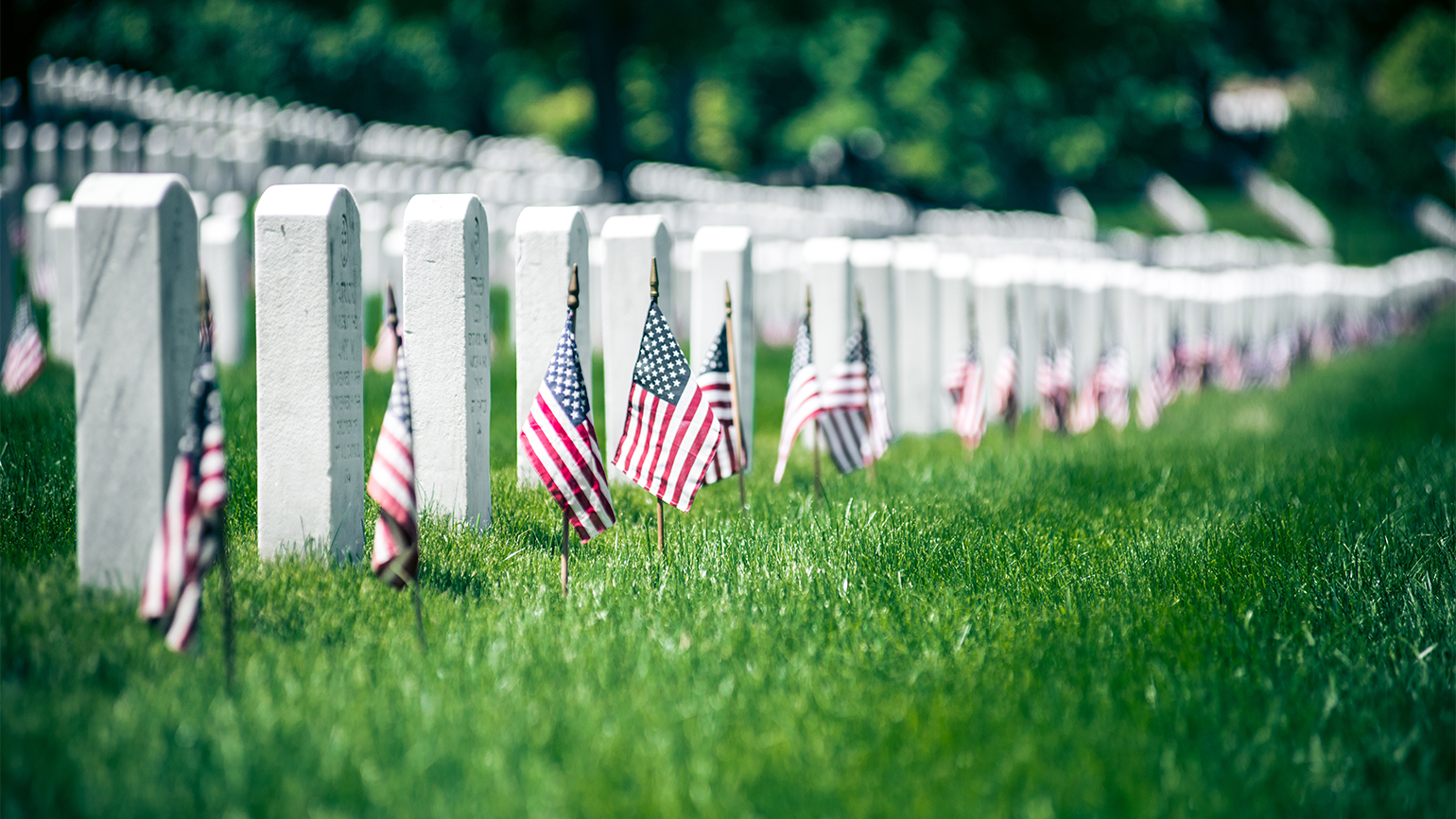 The grave markers of fallen heroes