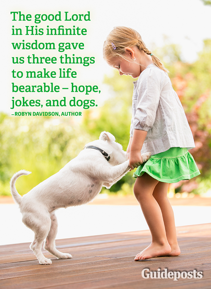 quotes hope jokes dogs God wisdom