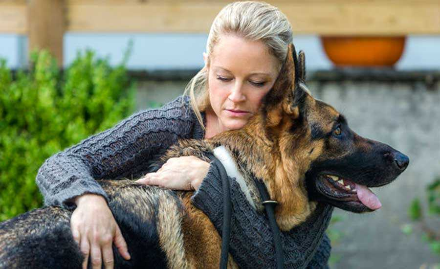 Teri Polo in her new movie A Christmas Shepherd