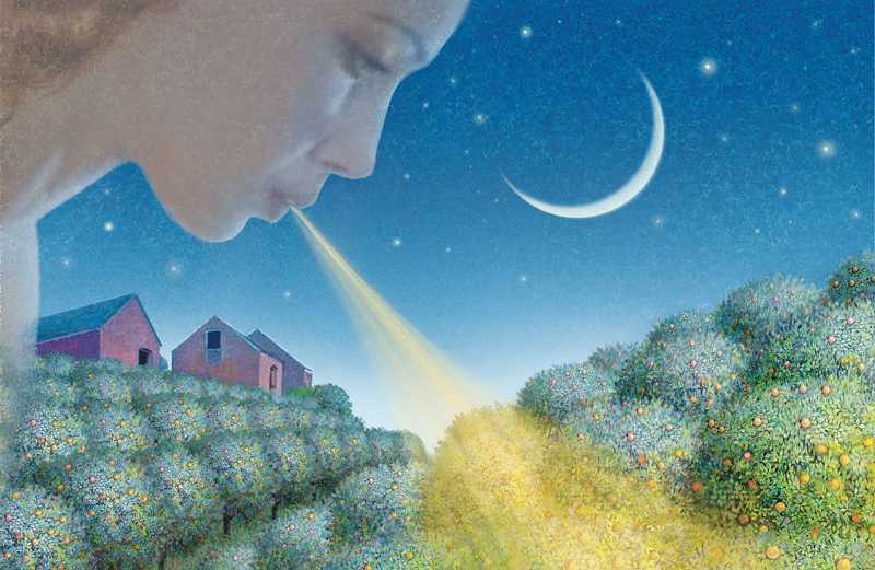 An artist's rendering of a heavenly angel breathing warmth on an orange grove
