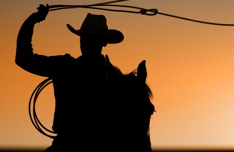 Mysterious Ways: Cowboy Wanted