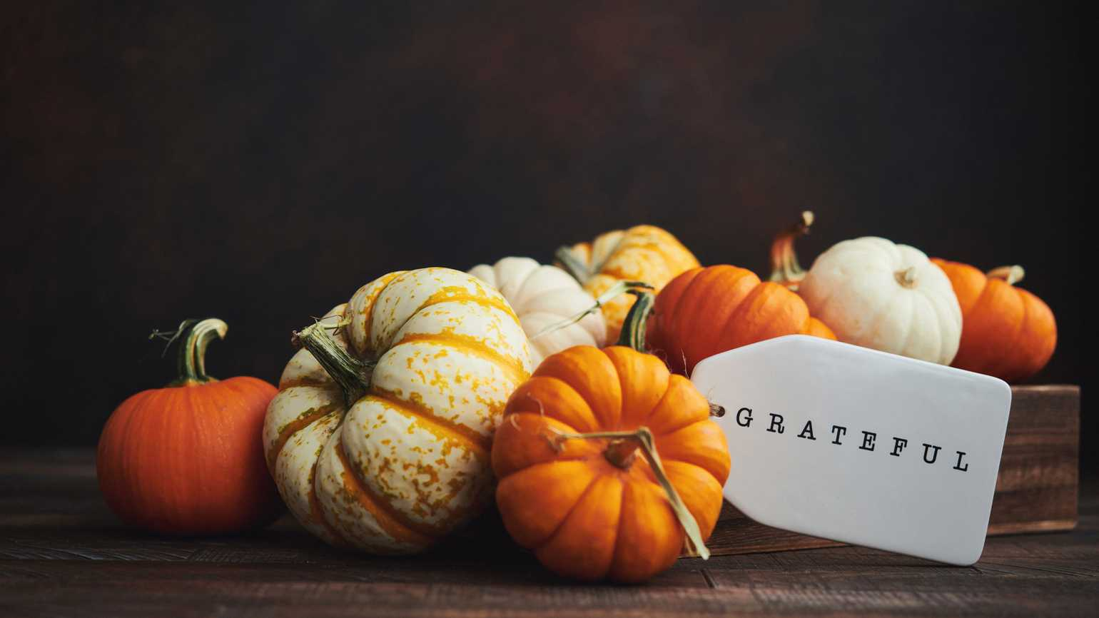 Pumpkins and gourds with a 'grateful' tag; Getty Images