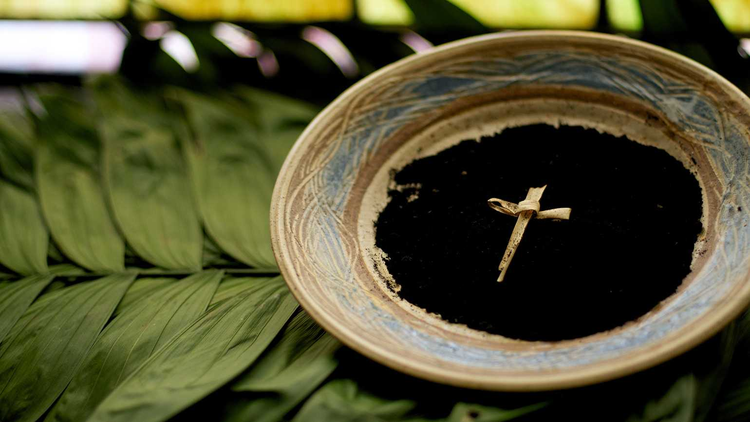 A bowl of ashes for Ash Wednesday, resting on a bed of palm branches