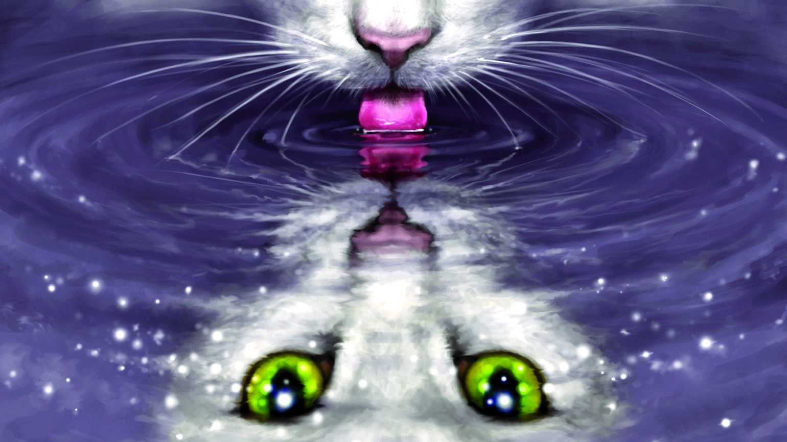 Illustration of a cat drinking water
