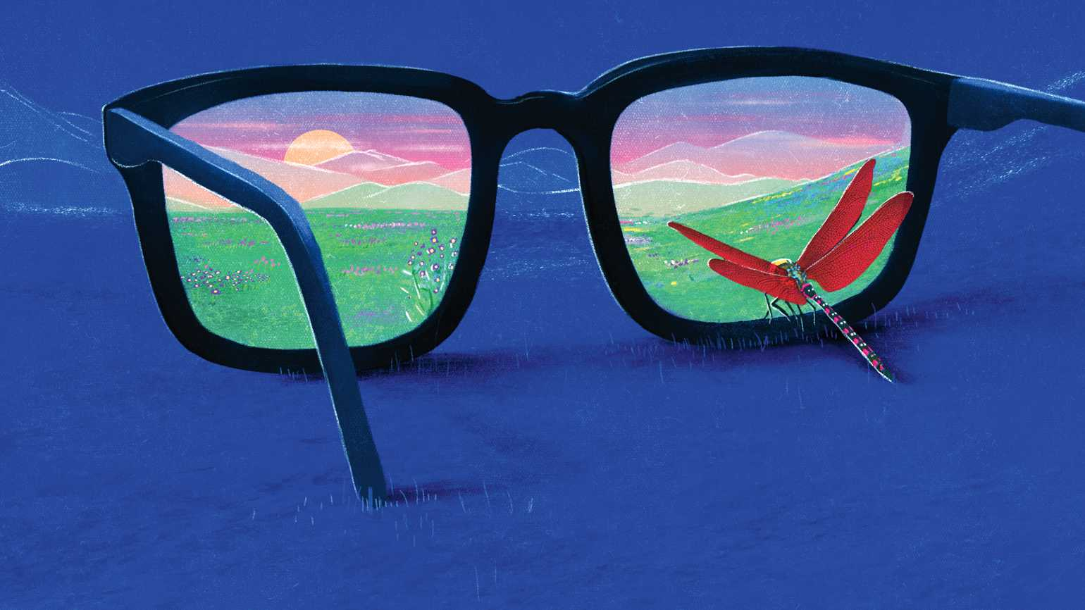 Glasses with a scenic view in the lenses; Illustration by Daniel Lievano