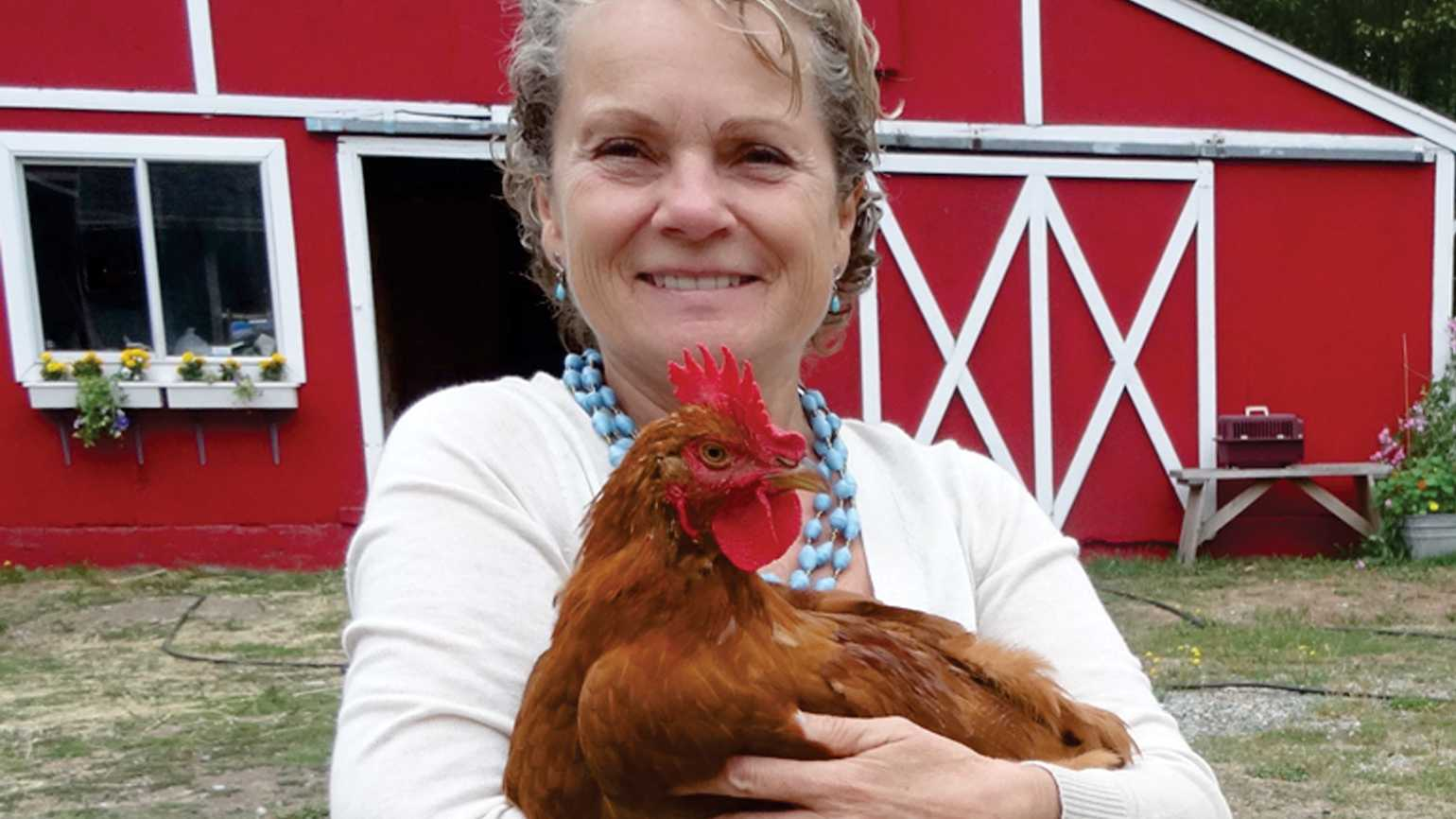 Louise the rooster loves people.
