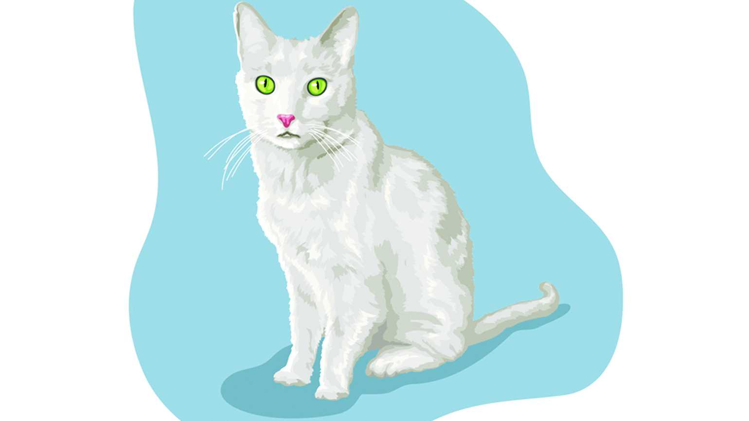 Illustration of a white cat with glowing eyes