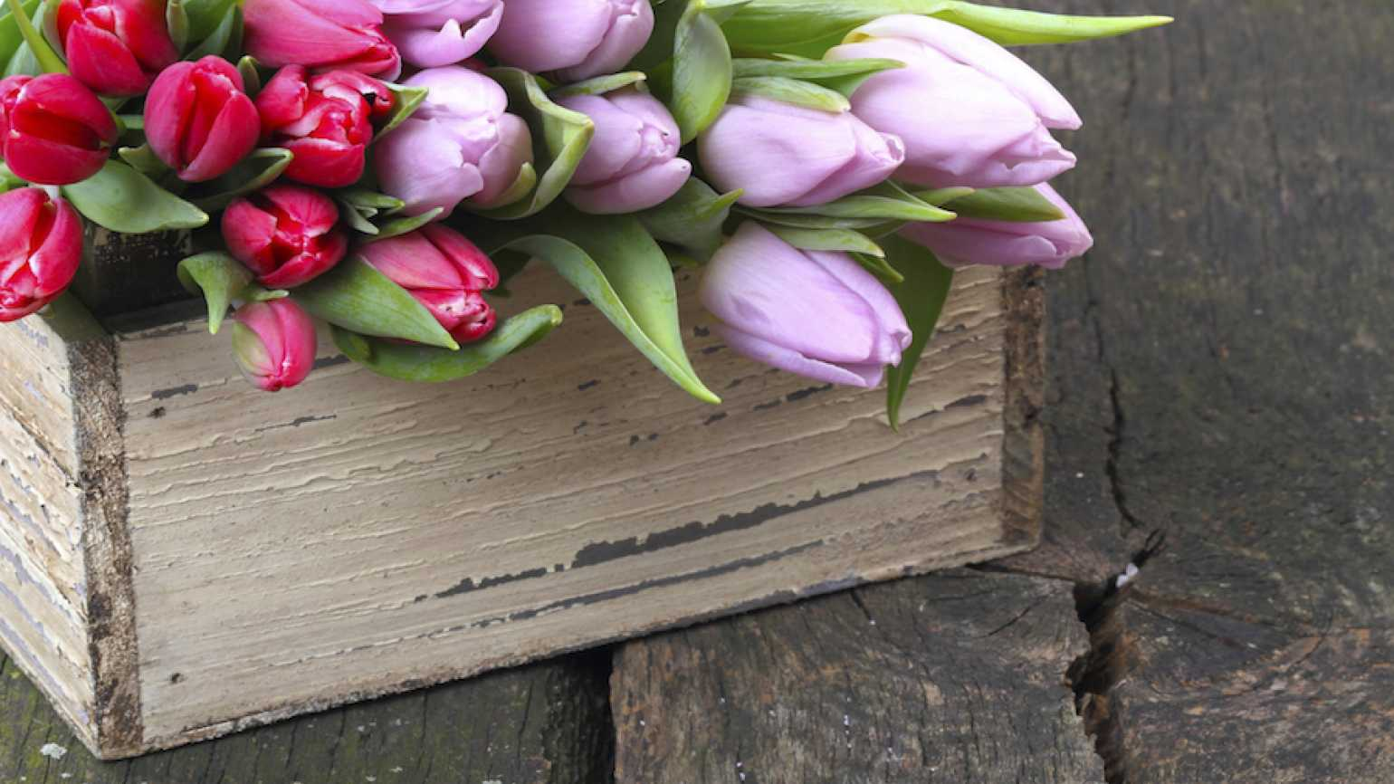 Mother's Day flowers (Thinkstock)