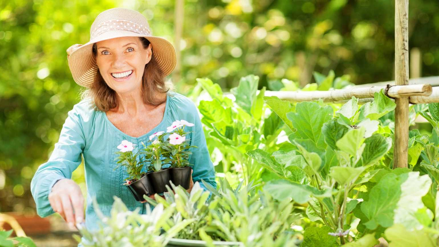 Gardening and a long life