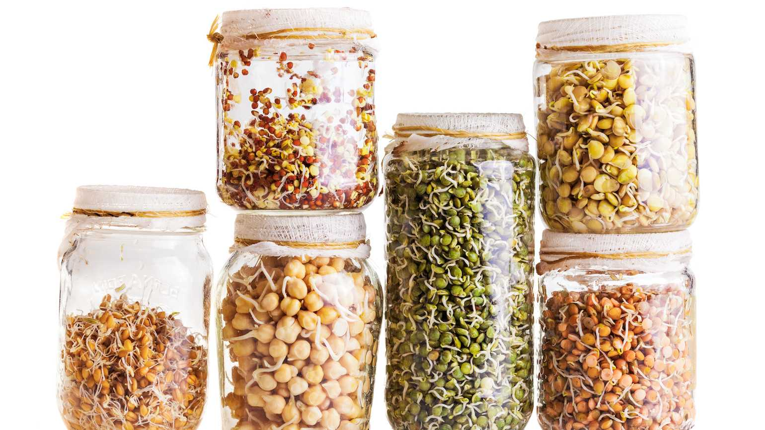 Jars of bean sprouts