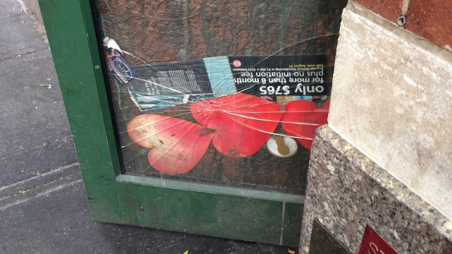 Diana Aydin sees hearts all over New York City.