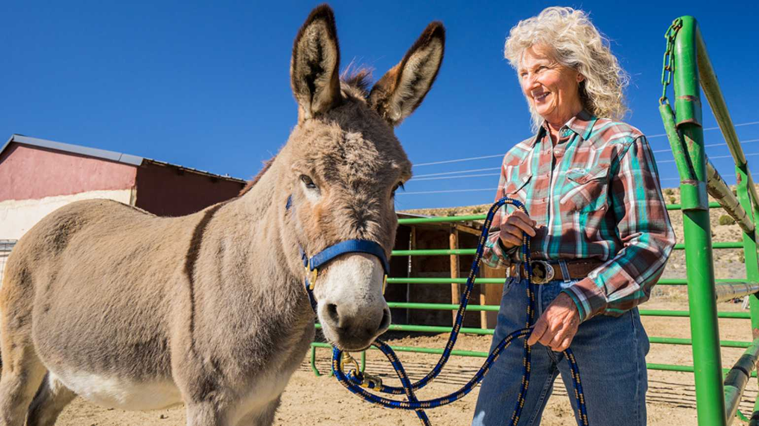 Guideposts: Lou Dean and donkey pal