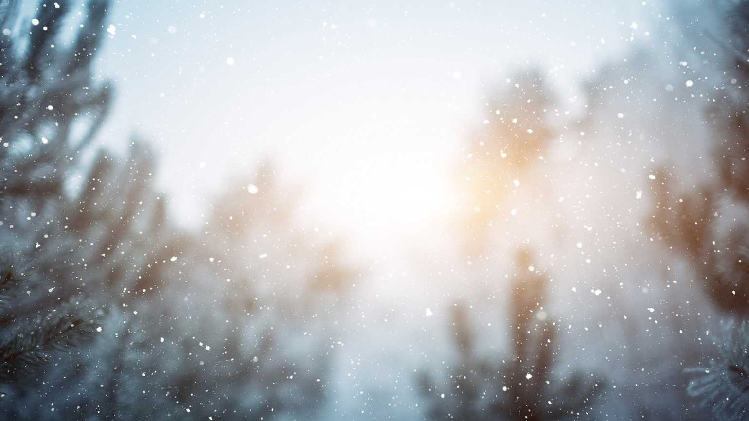 A wintery background with a flurry of snowflakes.