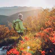 A hiker enjoys the fall foliage in the mountains