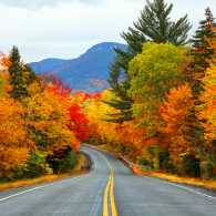 Highway surrounded by autumn foliage