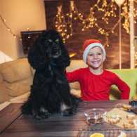 A father and son baking gingerbread cookies with their dog.