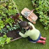 Protecting your back in the garden