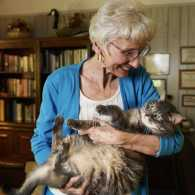 How This Dog Lover Became a Cat Fancier