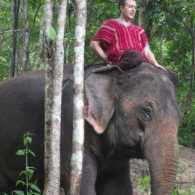 Mysterious Ways blogger Adam Hunter on an elephant on honeymoon in Thailand