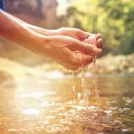 Cupped hands dip water from a stream