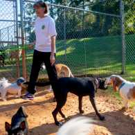 She Found the Unretirement Job She Was Perfectly Suited to: Dog-Sitting