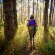 A person hiking in green scenery; Getty Images
