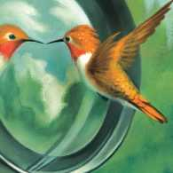 An illustration of a bird in front of a camera lens; Illustration by Christopher Buzelli