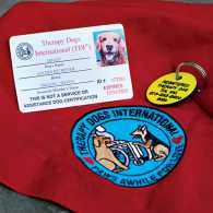 Therapy Dog International cerifciation. Photo by Roy Gumpel