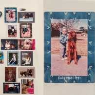 Pet photo magnets. Photo credit: Susan M. Meredith