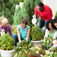 teens from different racial backgrounds gardening together, smiling