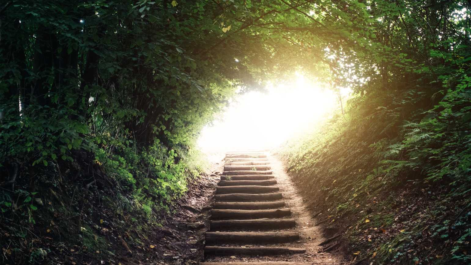 Path in forest to light (Getty Images)