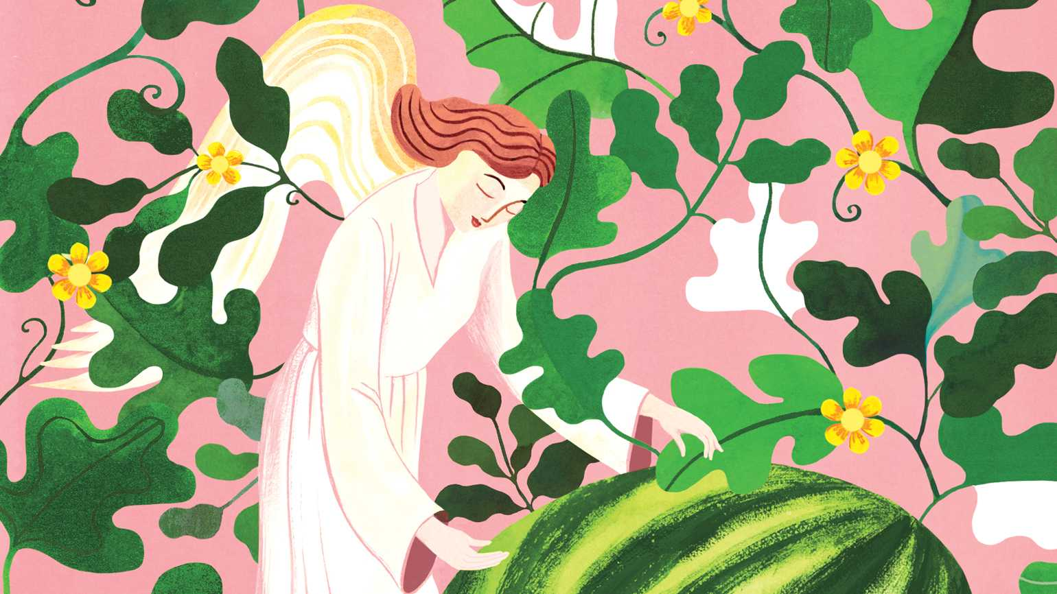 An illustration of an angel hovering over a watermelon; Illustration by Sarah Wilkins