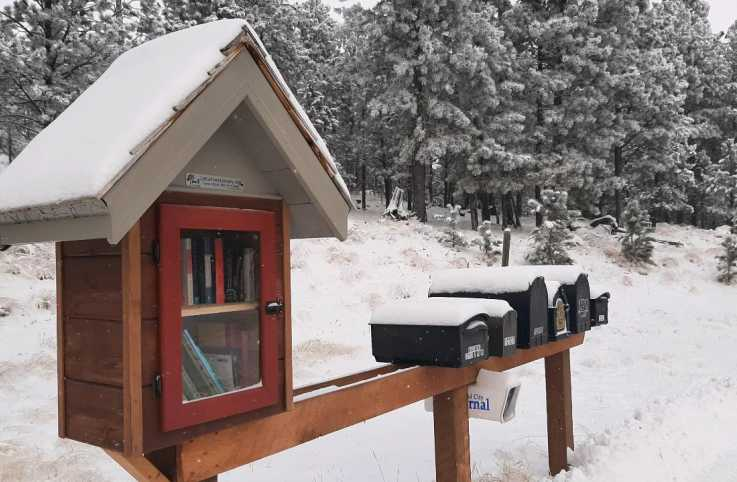 Courtesy Little Free Libraries