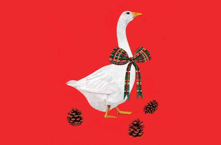 An illustration of a Christmas goose; Illustration by Jackie Besteman