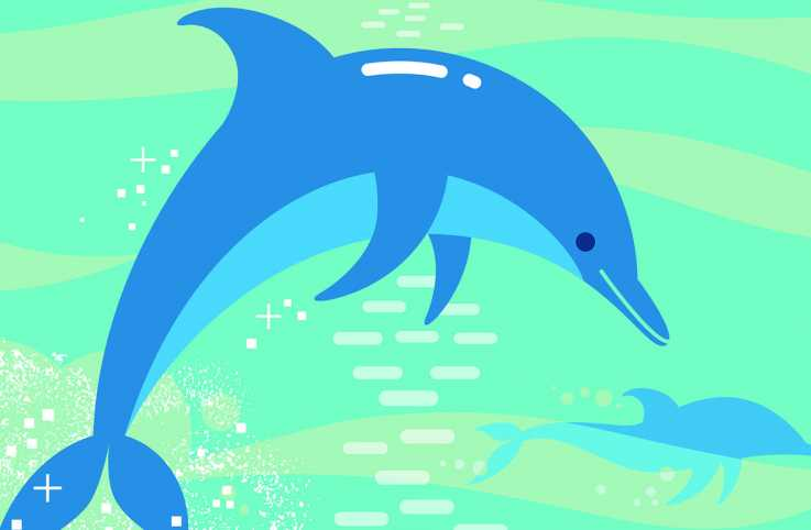 Illustration of a dolphin