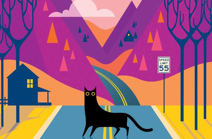 A black cat in the middle of the road; Illustration by Kirsten Ulve