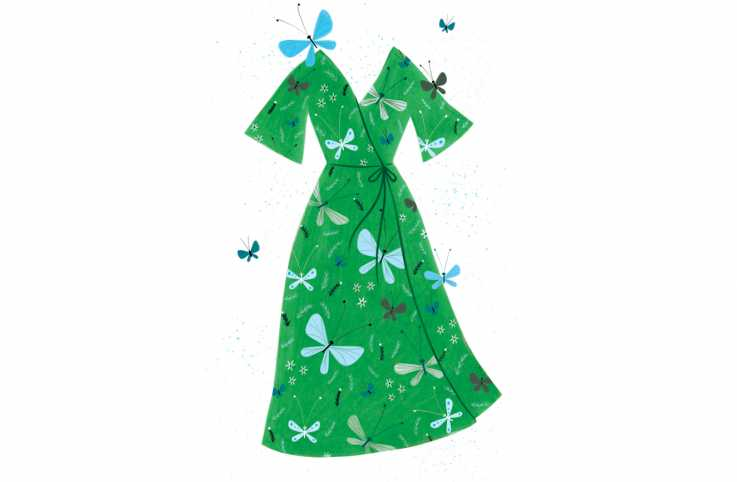 A vivid green dress with a butterfly print; Illustration By Jacqui Langeland