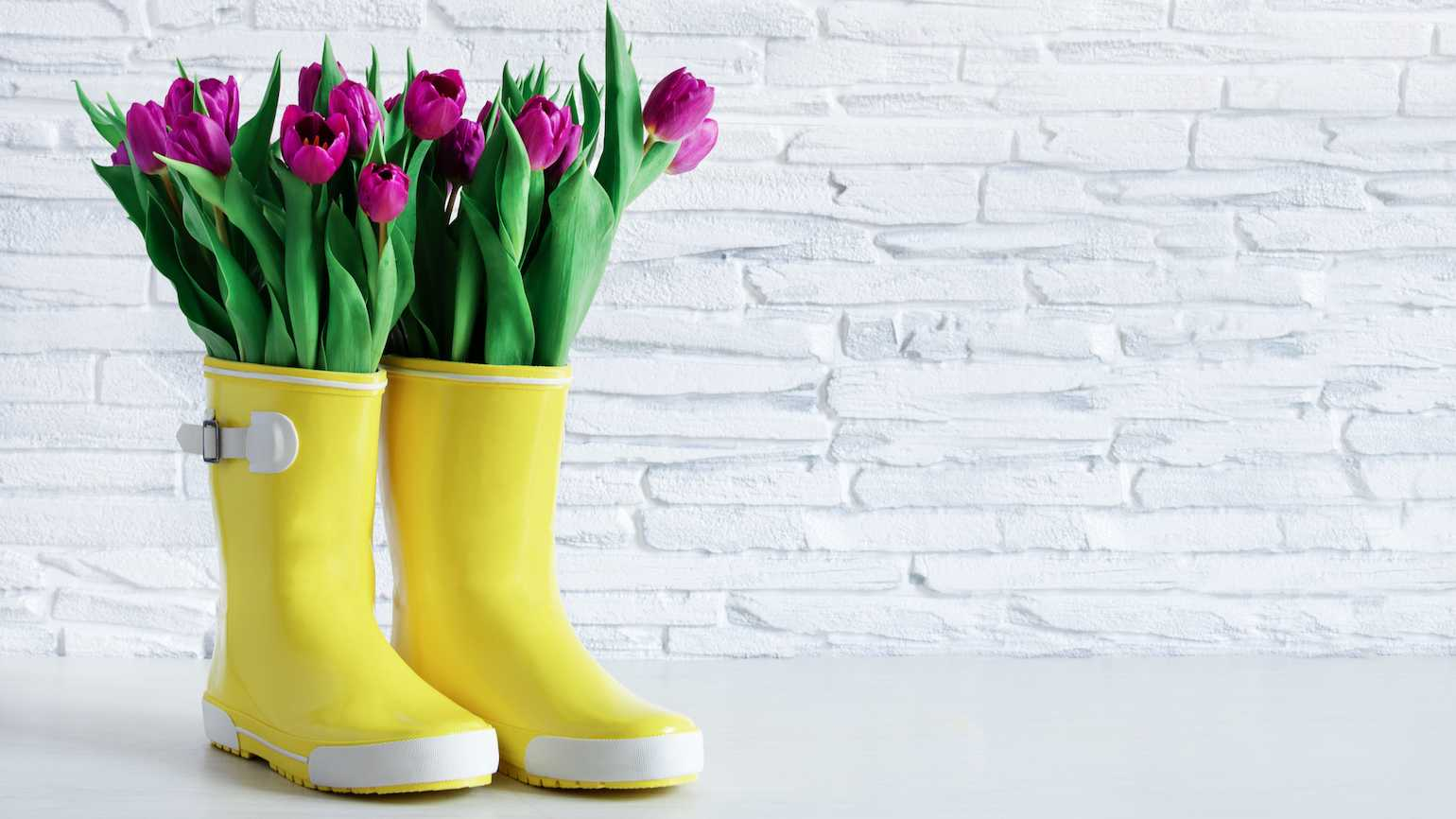 Rainboots with flowers