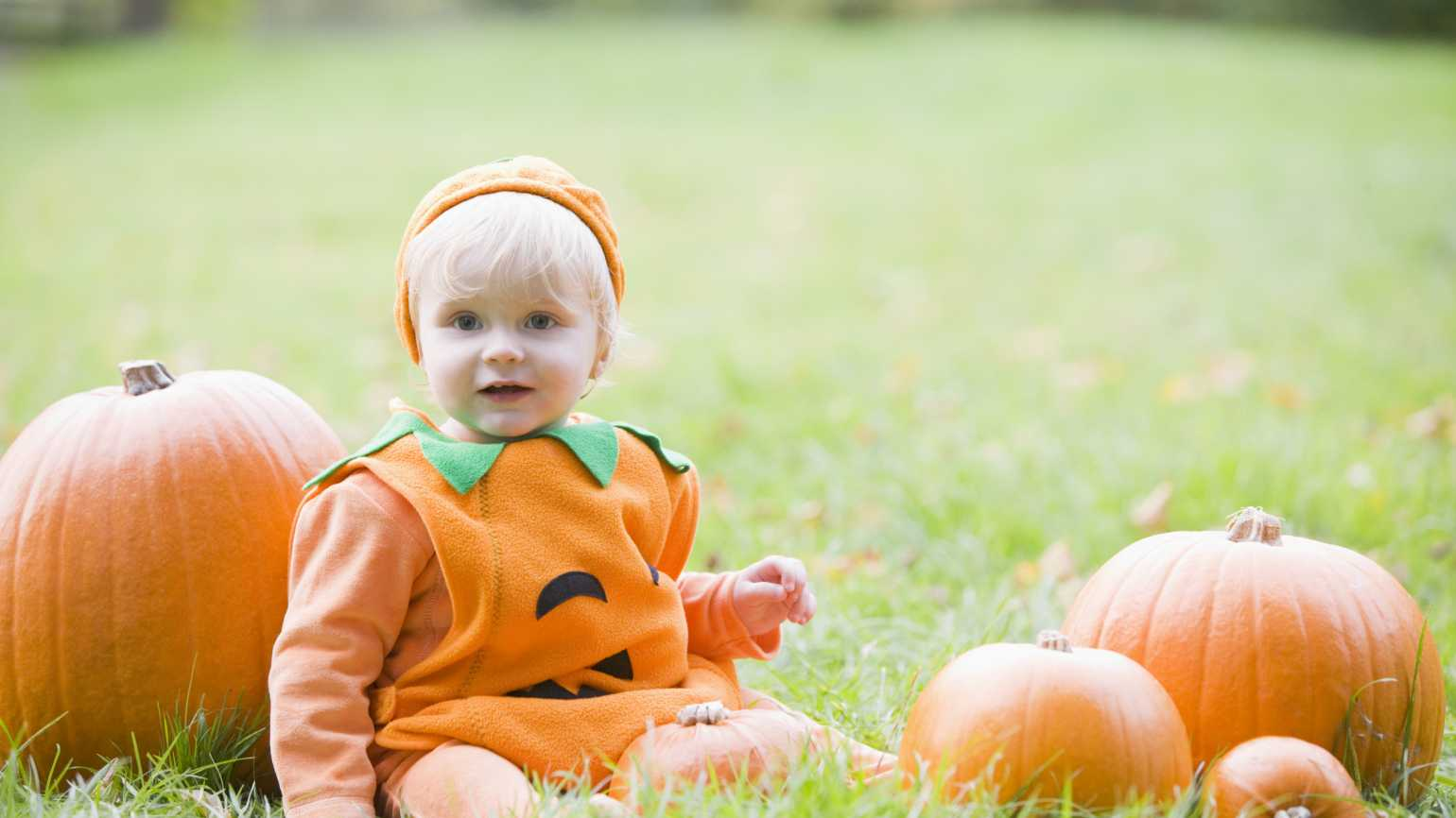 Child in a Halloween pumpkin costume in a field of pumpkins
