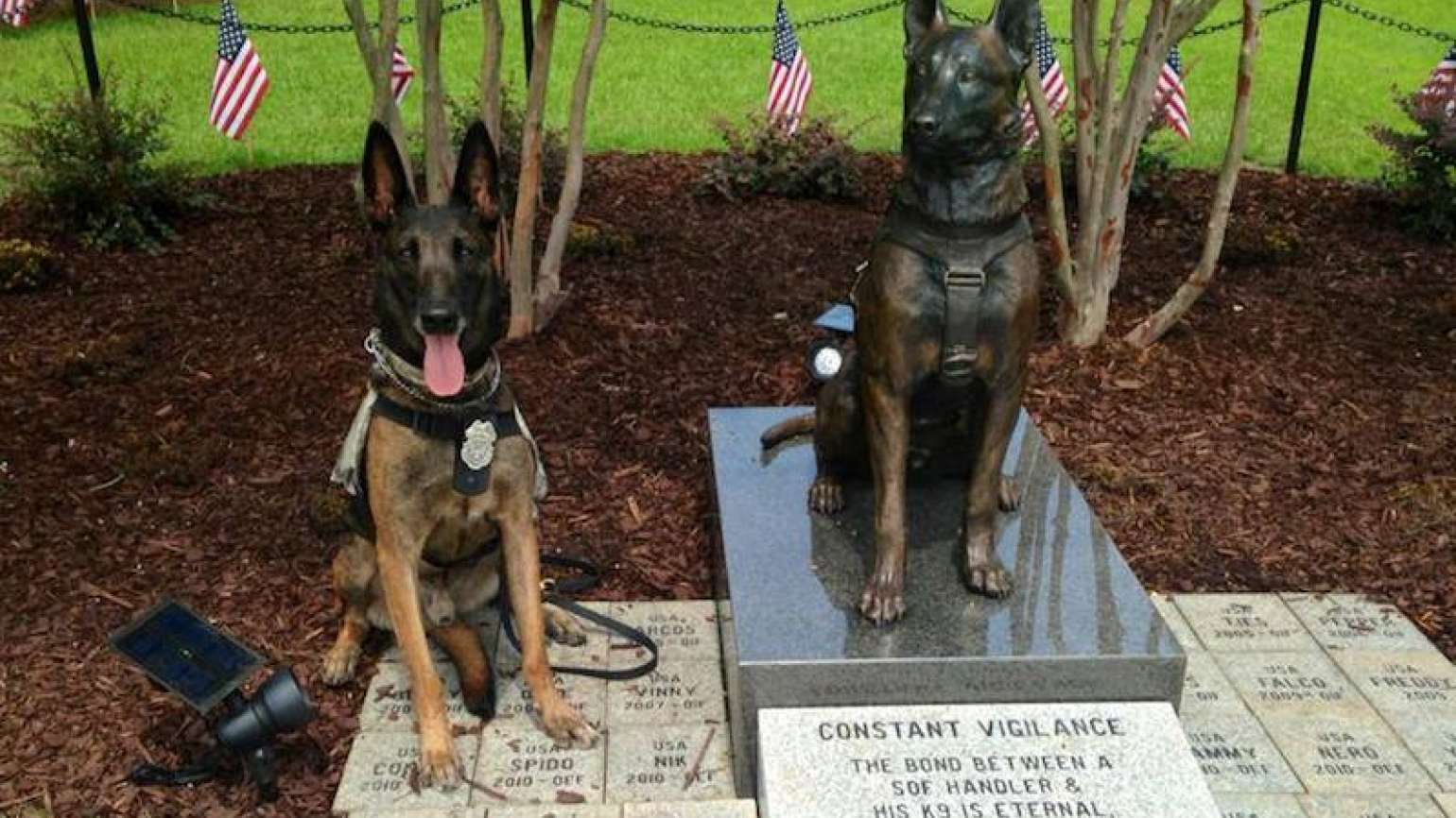 Ddoc at the Special Forces Canine monument, Fayetteville, NC. Photo courtesy o