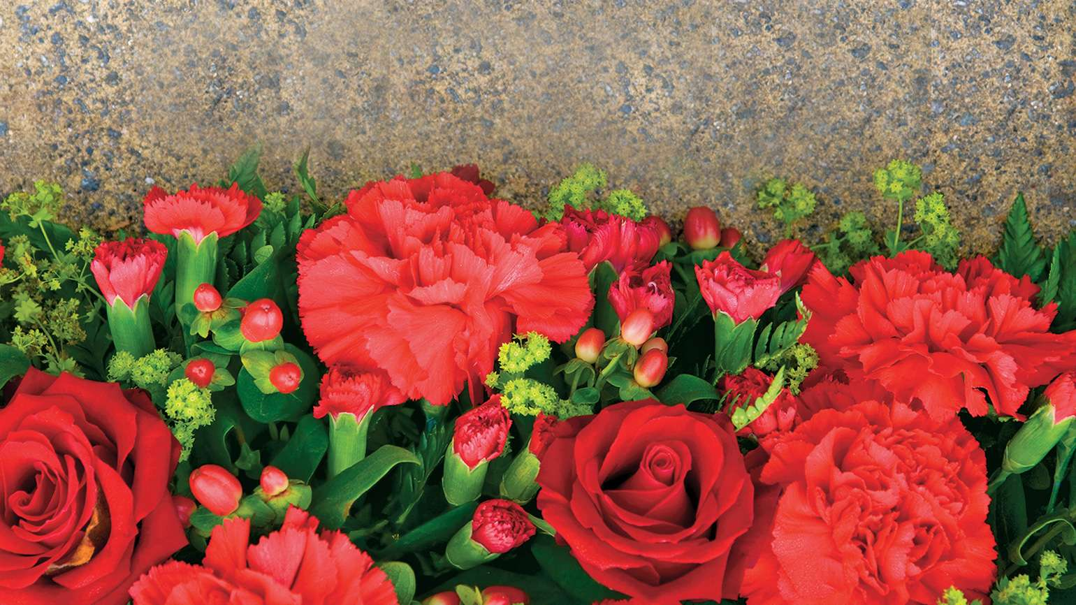 Red carnations nestled next to a tombstone