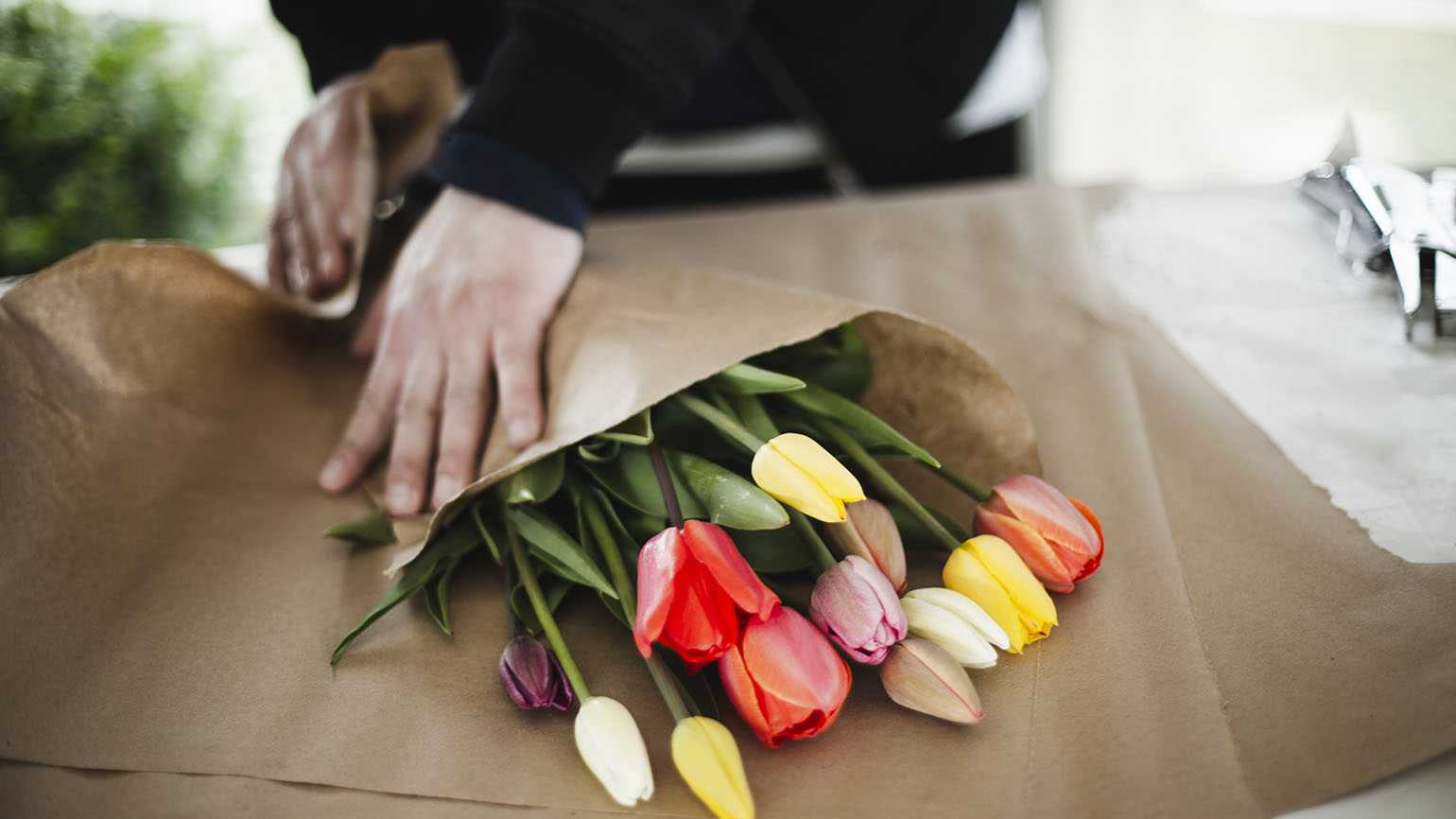 Man wrapping tulips