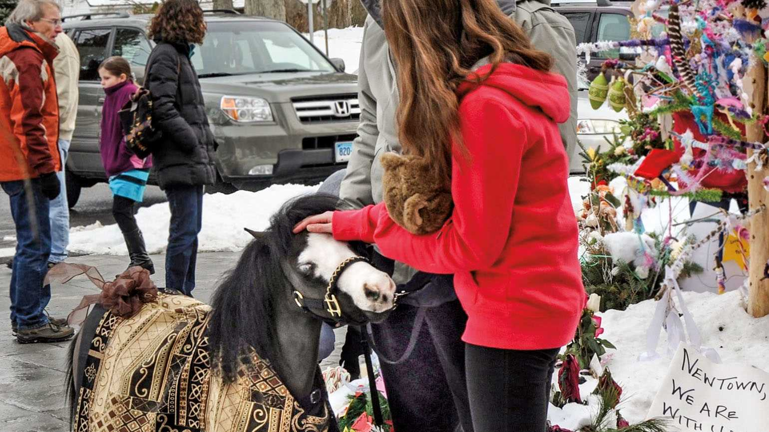Celebrating 10 Years of Magic, The Therapy Horse