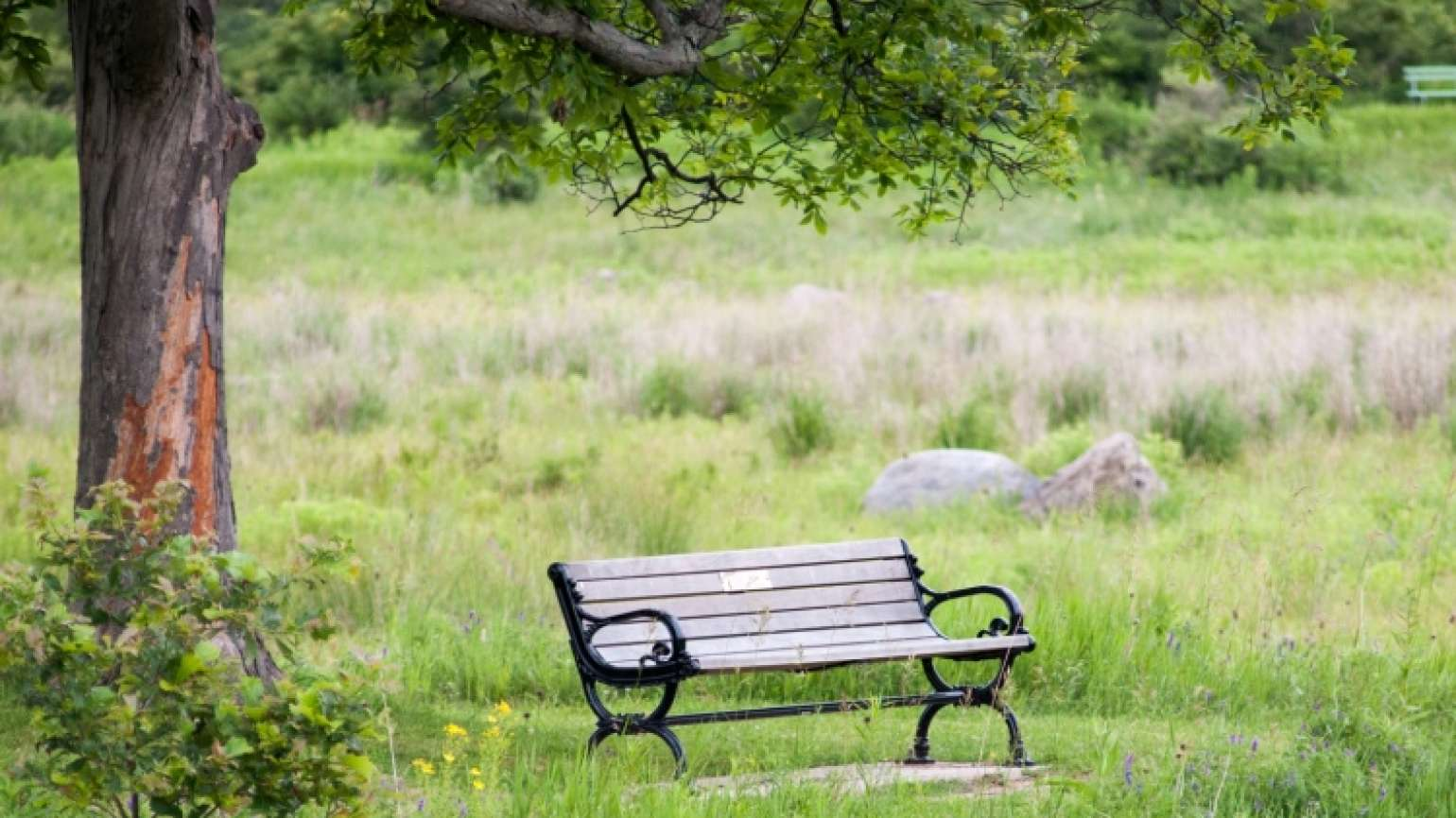 A memorial bench gives pause for a spiritual exercise