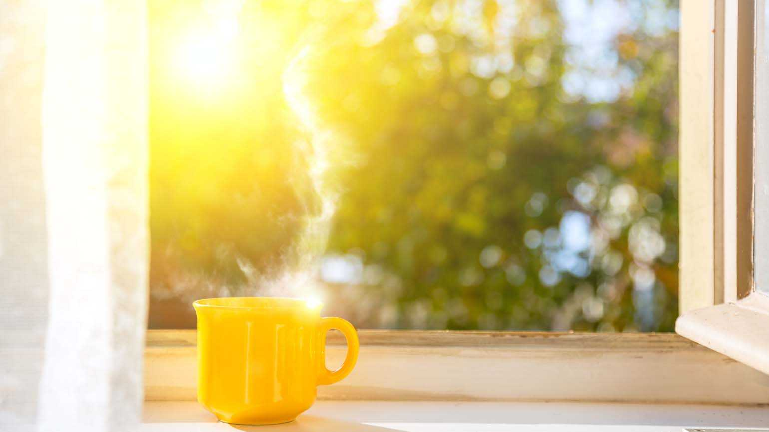 Cup on window with morning sun; Getty Images