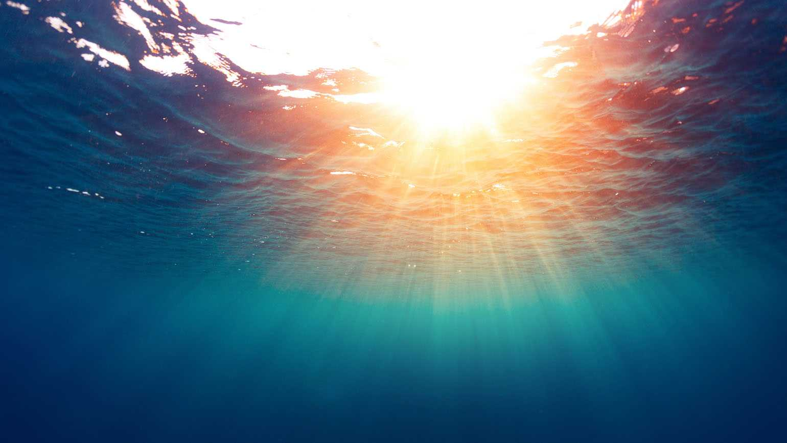 A divine light seen from underwater.