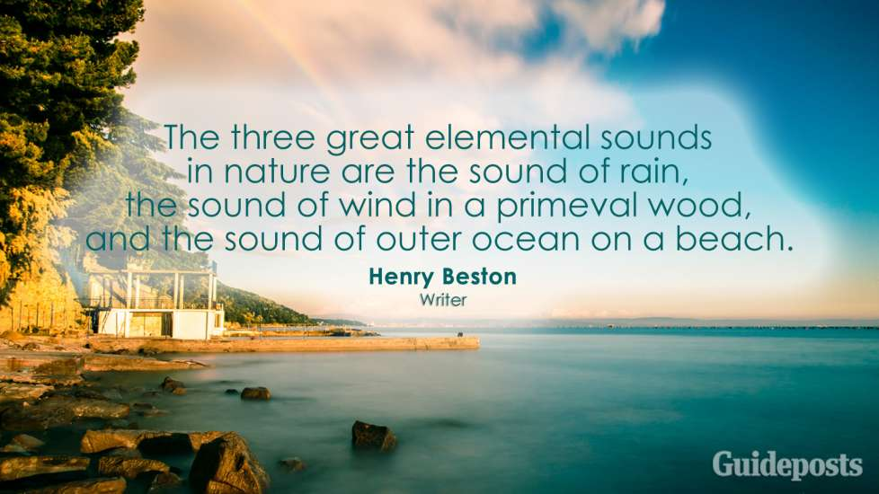 The three great elemental sounds in nature are the sound of rain, the sound of wind in a primeval wood, and the sound of outer ocean on a beach. Henry Beston