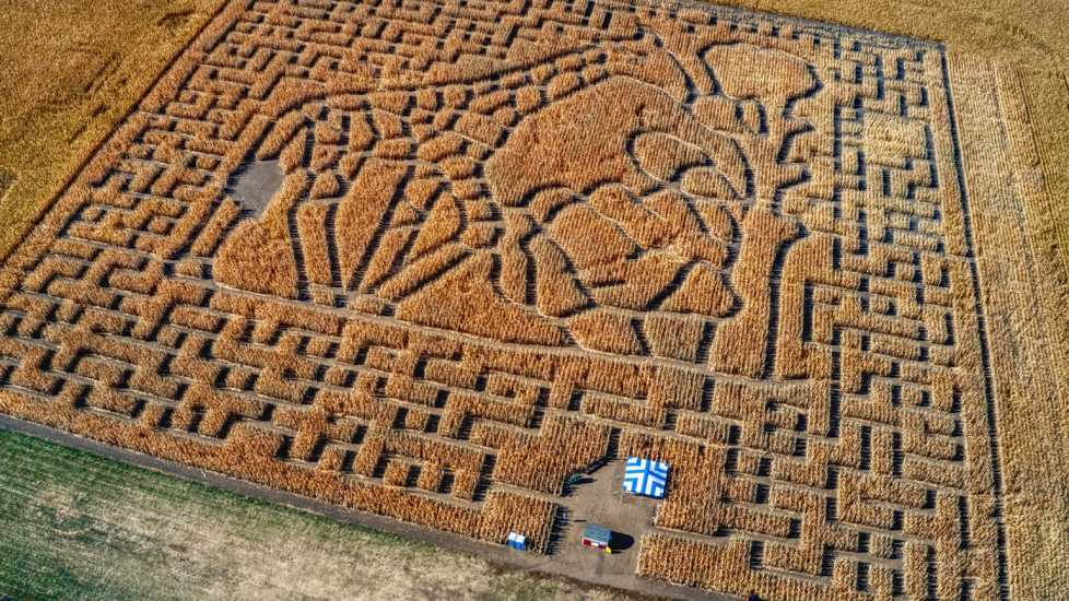 Aerial View of a Corn Maze outside of Sioux Falls, South Dakota. Credit: Shutterstock